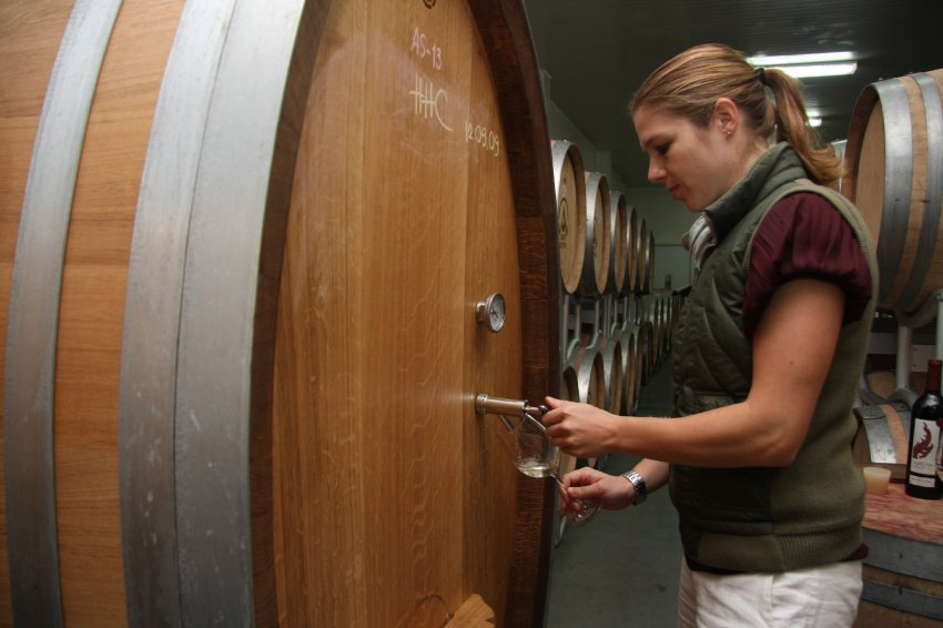 The 36-year-old chief winemaker at Monsoon Valley moved to Bangkok in 2007