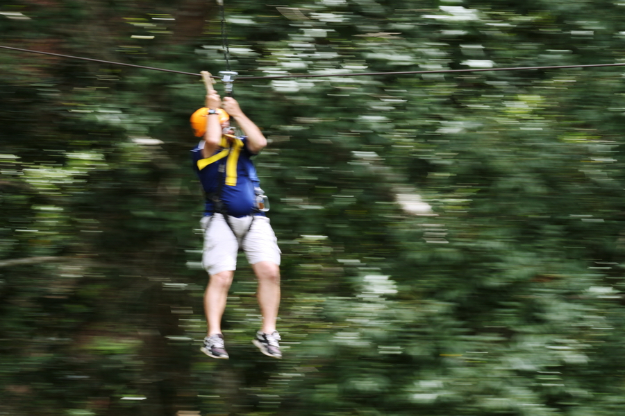 The 44-year-old Chinese tourist was zip-lining above the forest at Skyline Adventure