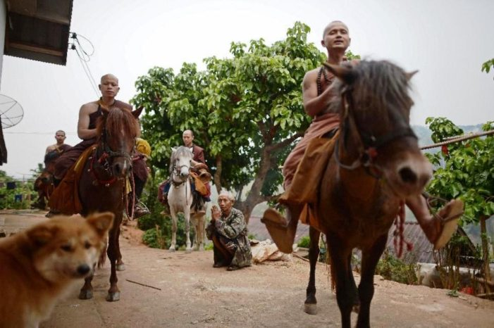 Golden Horse Temple Fights Drug Addiction with Horses and Boxing in Chiang Rai