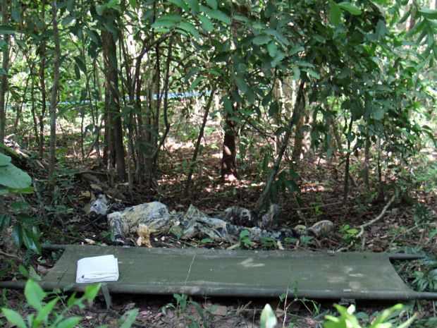 A body believed to be that of missing Canadian Dave Walker is seen in a jungle at the famed Angkor complex in Siem Reap province on May 1, 2014. A body believed to be that of a Canadian journalist who vanished in February in Cambodia has been found in jungle near the famed Angkor Wat temples, police said on May 1. Dave Walker, 58, disappeared on February 14 after leaving a guesthouse in Cambodia's northwestern tourist town of Siem Reap, according to the town's police chief Tith Narong. AFP PHOTO / YOU VONGYOU VONG/AFP/Getty Images