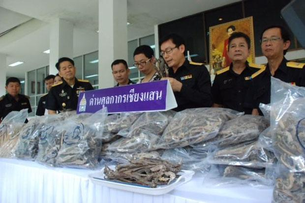 Customs officials show the seized seahorse skeletons at Chiang Saen border in Chiang Rai province on Monday. (Photo by Chinnapat Chaimol) Please credit and share this article with others using this link:http://www.bangkokpost.com/news/crime/676576/49kg-of-dried-seahorses-seized-at-border. View our policies at http://goo.gl/9HgTd and http://goo.gl/ou6Ip. © Post Publishing PCL. All rights reserved.
