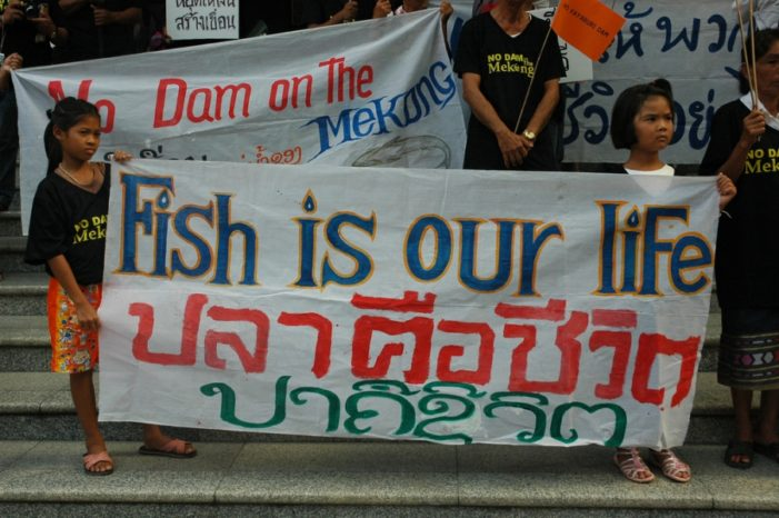 Eleven Dams a Grave Threat to the Lower Mekong River Basin