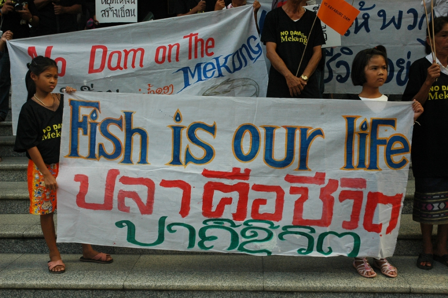 For nearly two decades, the onslaught of the Mekong's development by capitalists has spread its destructive wings with dozens of dams being planned on the lower and upper Mekong River mainstream