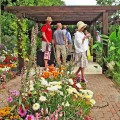 how-to-garden-get-inspired-with-garden-tourism-7