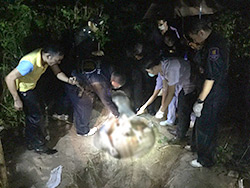 Police examine the scene where the remains of Australian biker Wayne Rodney Schneider were found in the Khao Cheechan area outside of Pattaya around midnight Tuesday. (Photo by Chaiyot Phuttanapong)