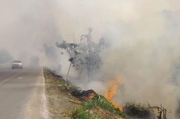 wild fires have reportedly damaged 5,694 rai of forestland