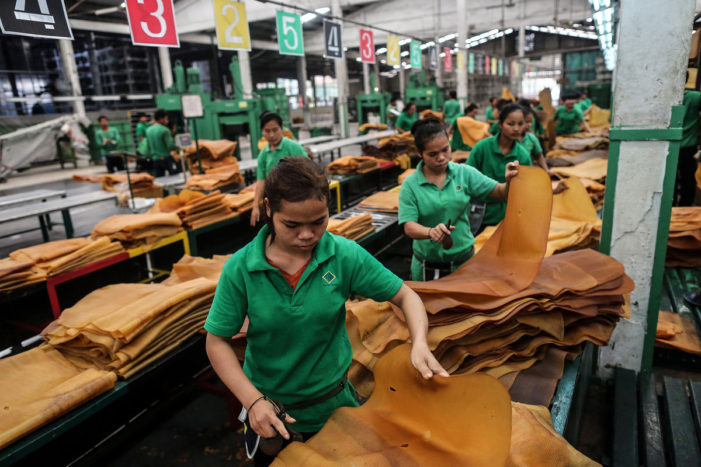 Thai Junta Approves Rubber Purchase Scheme to Aid Rubber Farmers