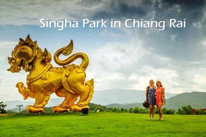 Singha Beer Bringing Big Tourism to Chiang Rai