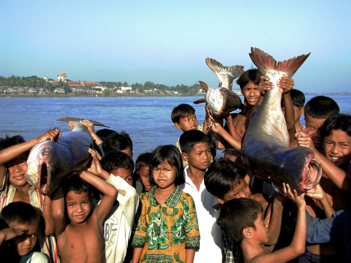 New Estimates Released on the Value of Mekong's Fisheries