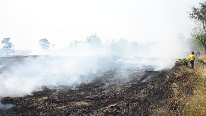 Northern Thailand's Haze Becoming Severe Health Issue