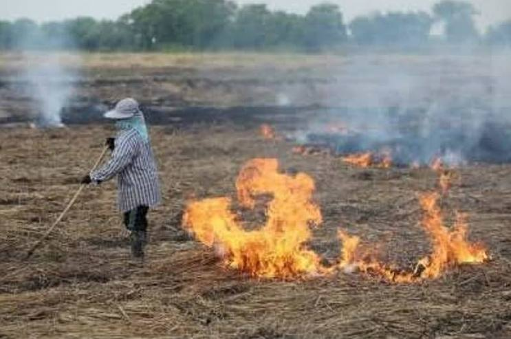 Farmers in Chiang Rai continue to burn fileds despite burning ban