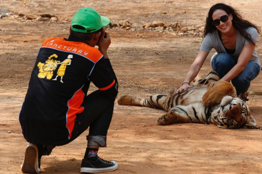 In the past, attempts by wildlife officials to inspect the tigers have been blocked by the temple and its abbots.