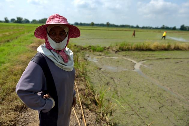 Thailand Farmers Facing Worst Water Shortage in Two Decades