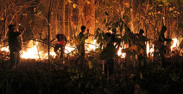 hai forestry officials and soldiers attempt to control a forest fire