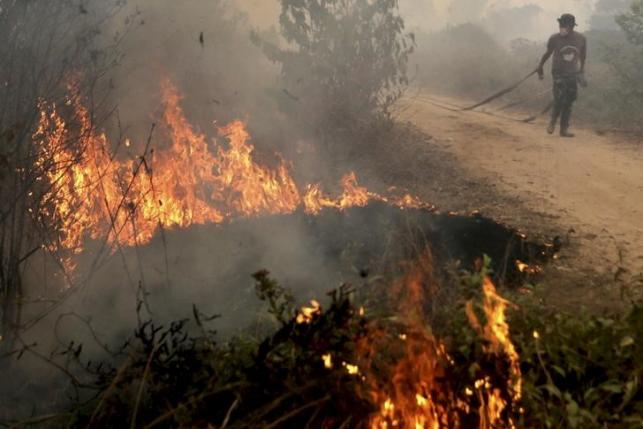 Thai Farmers burn fields in the belief that ashes will replenish the soil