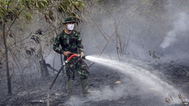 Firefighting efforts continued on the ground, helicopters also had to be employed to dump water