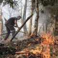 A Thai official extinguishing wildfires causing the haze in Northern Thailand