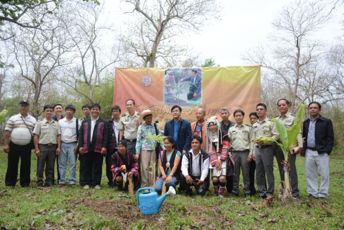 National Tree Day, Villagers Encouraged to Promote Forest Recovery in Chiang Rai