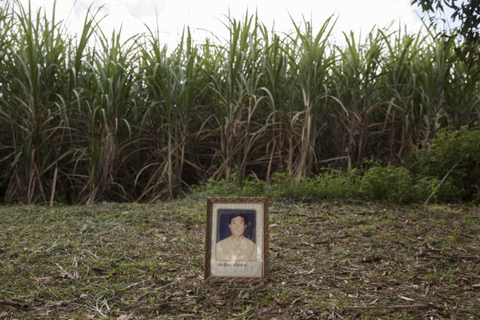 Murdered After Defending Thailand's Environment