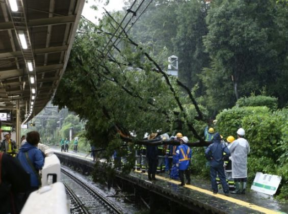 Typhoon Lionrock made landfall near the city of Ofunato, about 500 kilometers (310 miles) northeast of Tokyo.