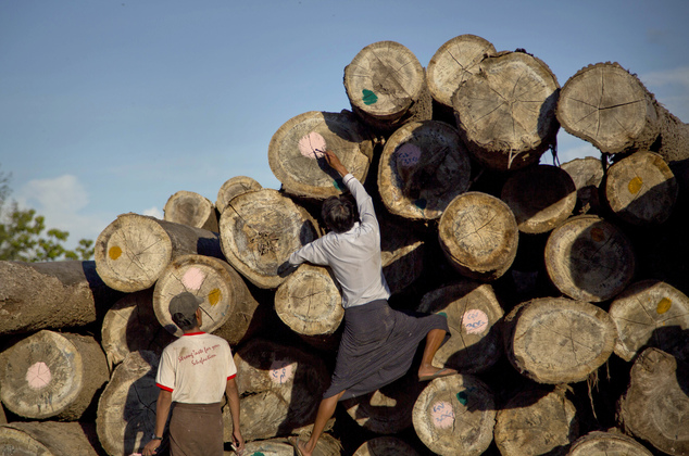 In this June 27, 2016, photo, a worker marks logs before transporting at a yard in Wuntho, northern Sagaing division, Myanmar. According to the U.N. Food and Agriculture Organization, from 2010 to 2015, Myanmar had the third-largest forest loss in the world, equivalent to an annual loss of 546,000 hectares. (2,100 square miles). Myanmar is struggling to stop illegal logging that has erased one-quarter of the country's valuable forests in a generation. (AP Photo/ Gemunu Amarasinghe)