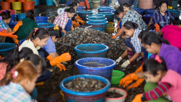 Promises Unmet as Thailand's Junta Vows to Reform Shrimp Industry