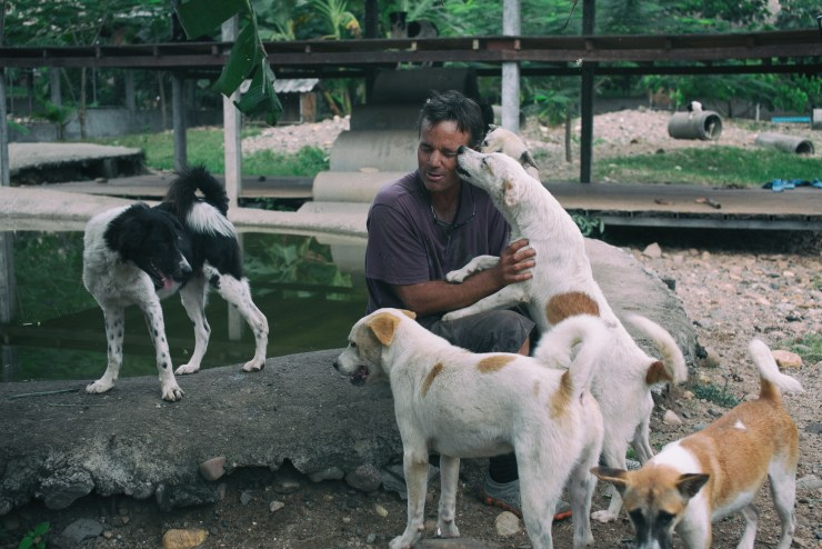 Darrick, Lek's husband, goes into the dog runs almost every day to greet his 500 friends.