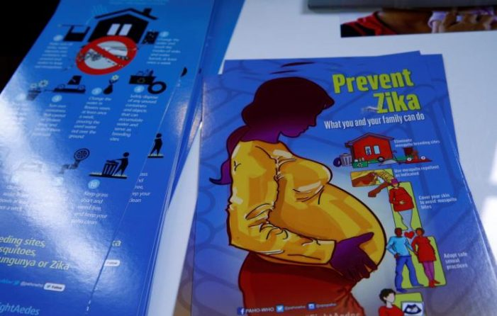 Thailand's Public Health Ministry Considers Zika Tests for all Pregnant Women