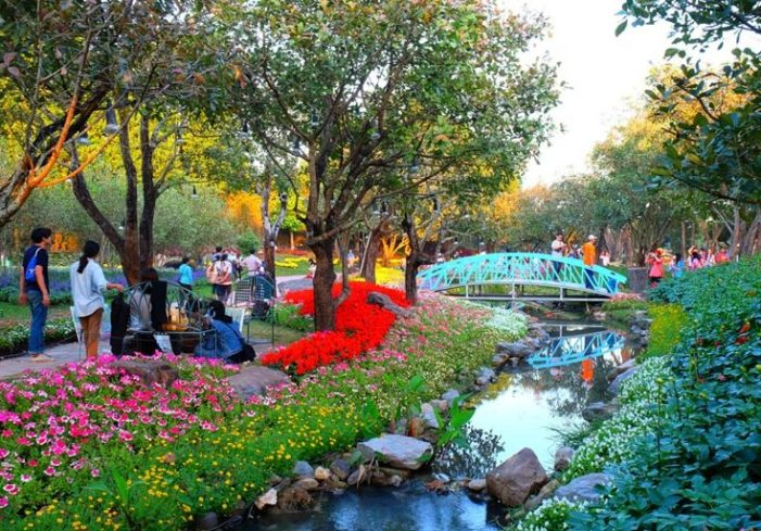 Tourists Flock to 13th Annual Flower Festival in Chiang Rai