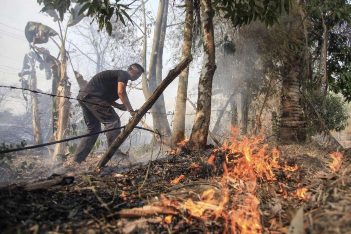 Brush Fires Consume Over 7000 Rai in Northern Thailand