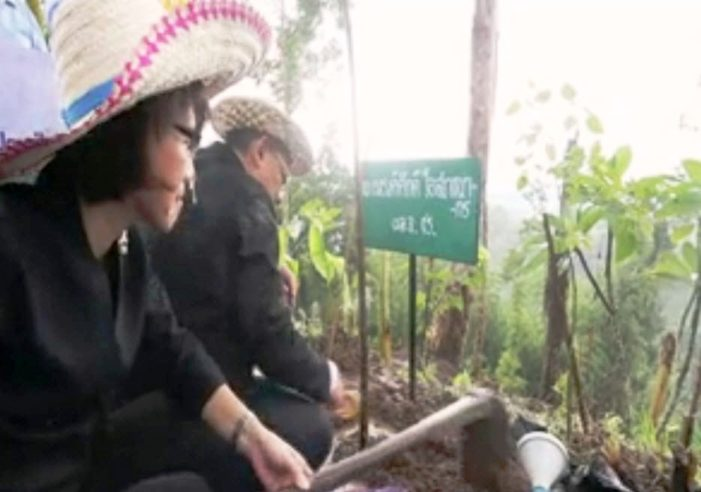 Chaing Rai Governor and Execs of PTT Plc Co Ltd Oversee Planting of 3,000 Tree Saplings