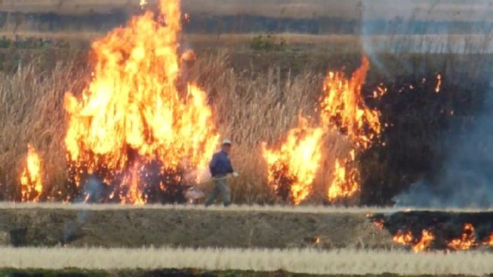 Northern Authorities Act to Stop Northern Farmers Lighting Fires to Clear Land