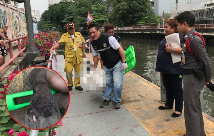 Unidentified Foreigner's Body Found Floating in Bangkok Canal