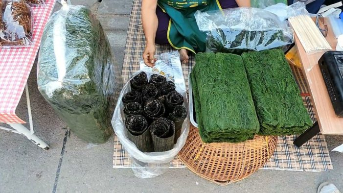 Villagers from Chiang Rai's Chiang Khong District Turn Drought into Baht, Selling Weeds from Mekong River