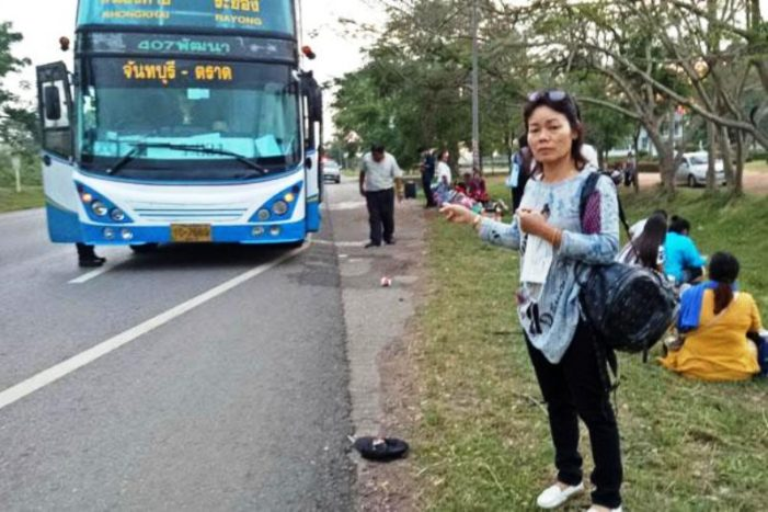 Inter-Provincial Bus Passengers Narrowly Miss Death after Driver Falls Asleep at the Wheel