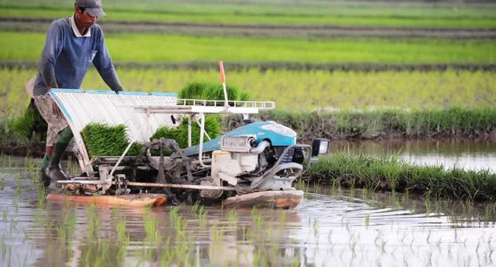 Agriculture Ministry Encourages Chiang Rai Farmers to Embrace Technology