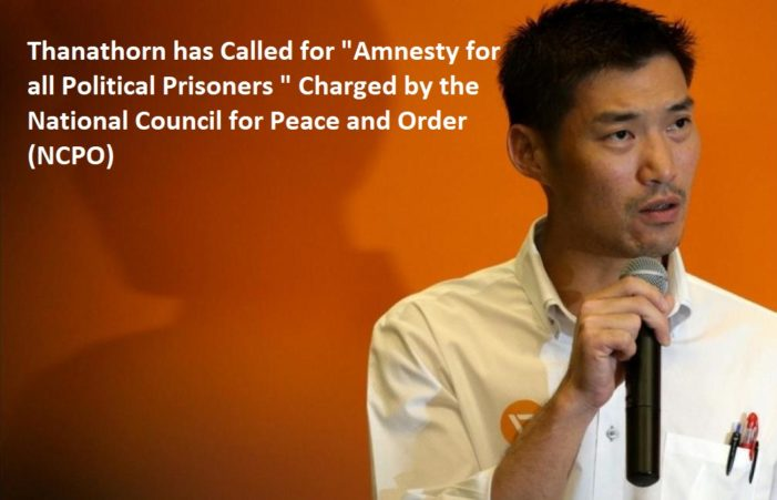 Thailand's New Future Forward Leader Under Fire from Junta for Charter, Amnesty Remarks