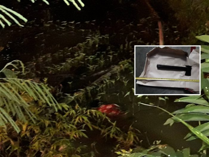 Chiang Rai Man Kills Wife With Axe Then Dumps Her Body in Pond