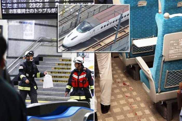 Knife Wielding Attacker Kills One, Wounds Two Others on Japan's Famous Shinkansen Bullet Train