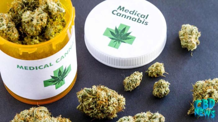 Intellectual Property Department Under Fire for Patent Applications for Medical Marijuana Products
