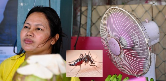 How Those Pesky Mosquitoes Us Our Body Heat To Find and Bite Us