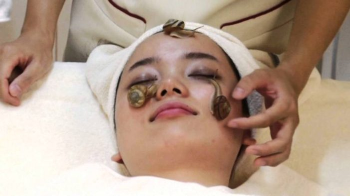 Thailand's Snail Slime The Next Big Trend in Beauty