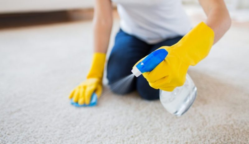 Company,professional, carpet cleaning