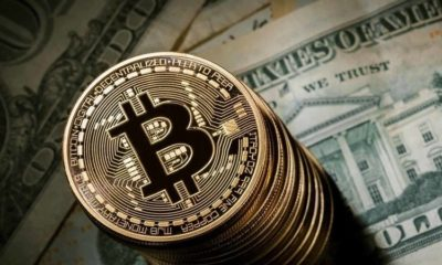 How to earn maximum profits through cryptocurrency?