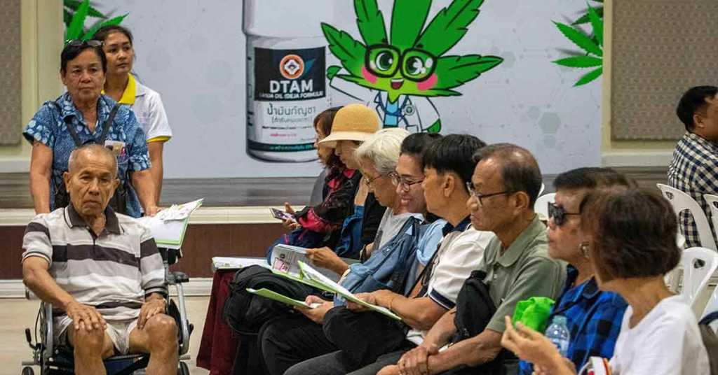 CBD hemp oil,Medical Cannabis, Marijuana, Thailand