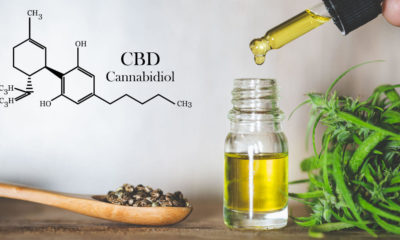 Hemp CBD Oil & Cannabidiol Based Products