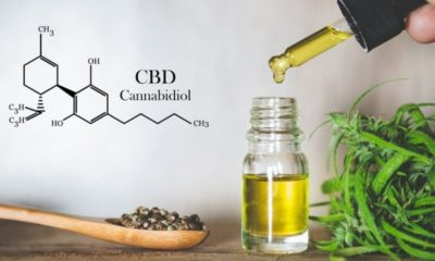Understanding How CBD Oil Can Help Menopause Symptoms