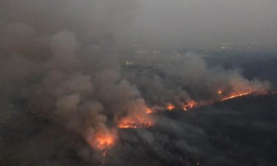 Forest Fires in Northern Thailand The Work of Arsonists
