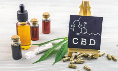Everything You Should Know About CBD Oil and Products