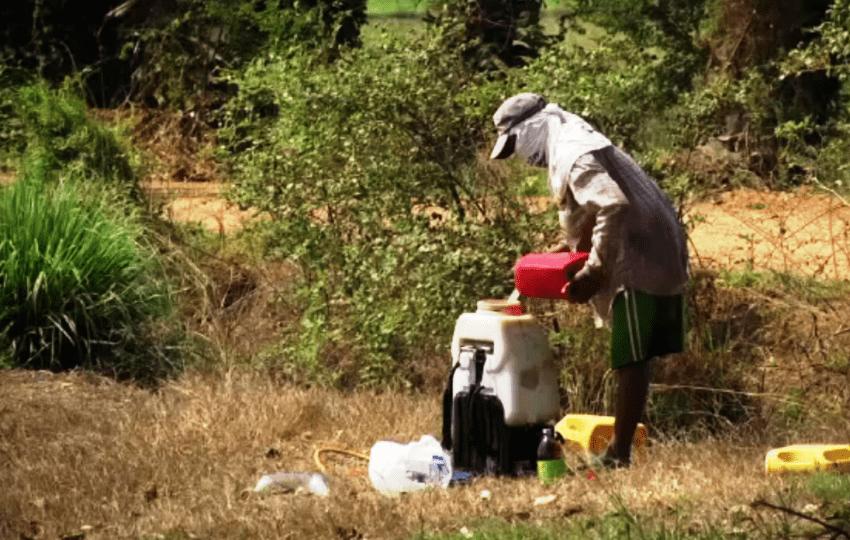 Thai Farmers, Hazardous Chemicals, Thailand
